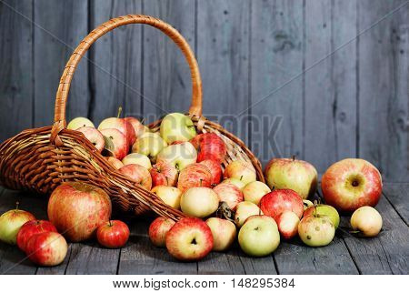 basket with apples on gray wooden background