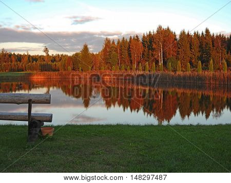 Autumnal tree reflection in the lake water.