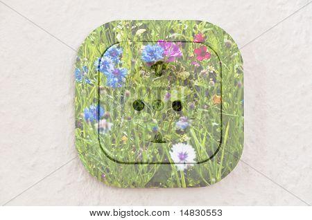 Conceituais: Flores sobre tomada com caminho