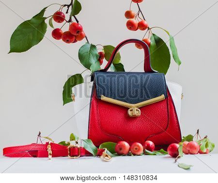 Beautiful bright bag and belt close, light gray background in the decoration of apples