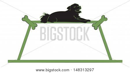 Silhouette of a small black dog on the green frame. Vector illustration