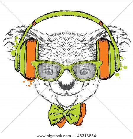 Cute koala on headphones. Hipster. Music. Cute koala on headphones. Hipster. Music.