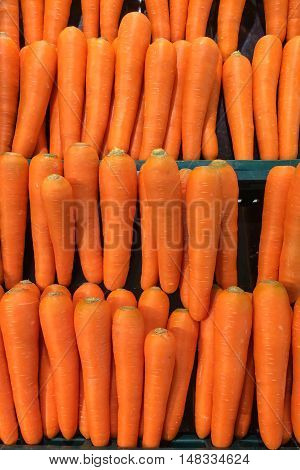 Background of fresh carrots on a supermarket.