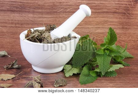 Fresh Green And Dried Lemon Balm With Mortar, Herbalism, Alternative Medicine