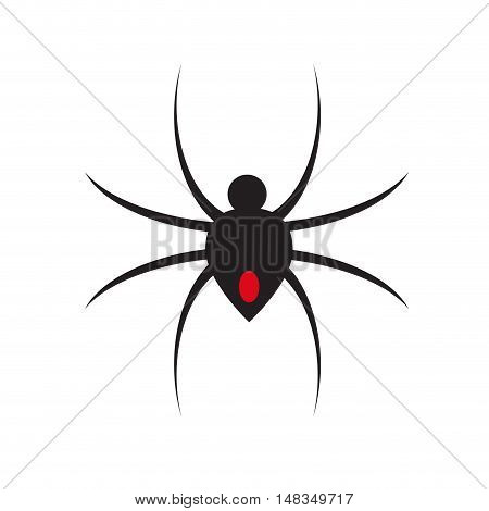 Vector sign clack Spider isolated in white