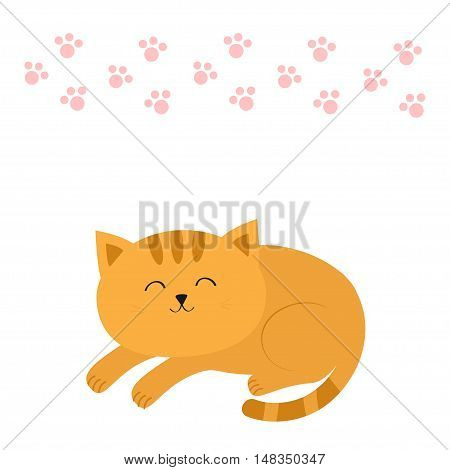 Cute lying sleeping orange cat with moustache whisker. Funny cartoon character. Pink animal paw print. White background. Isolated. Flat design. Vector illustration