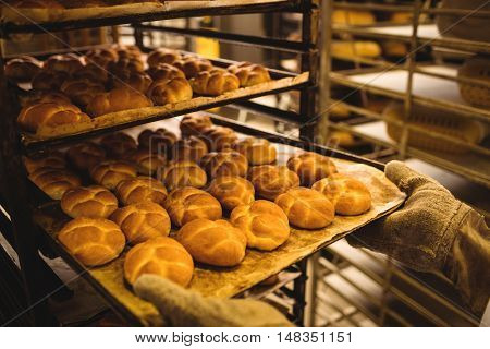 Hands of baker holding a tray of michetta in bakery shop