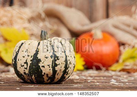 Pumpkins In A Jute Bag On Wooden Board
