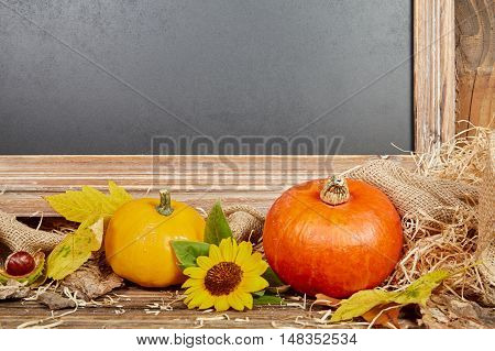 Chalkboard Autumn Sill Life With Pumpkin
