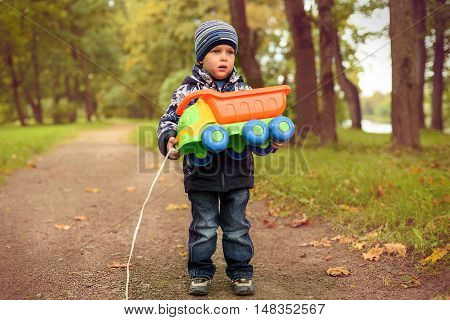 little lovely boy happily smiles, walk in the autumn park