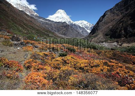 Beautiuful landscape of Mera peak base camp, Nepal