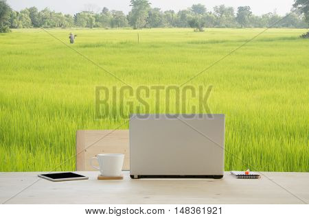 Office desk with notepad notebook pencil and coffee cup over rice farm background. View from front notebook space.