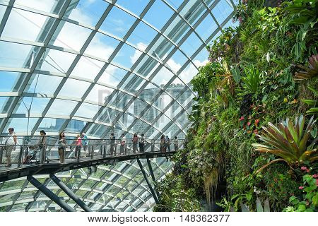 SINGAPORE - MAY 7 2016 : Tourists walk on the bridge in Cloud Forest dome at Garden by the bay Singapore.