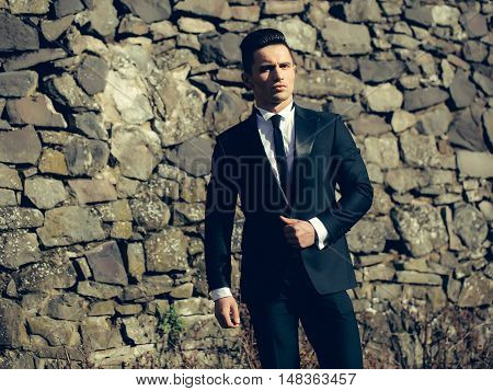 Handsome Man On Masonry Background