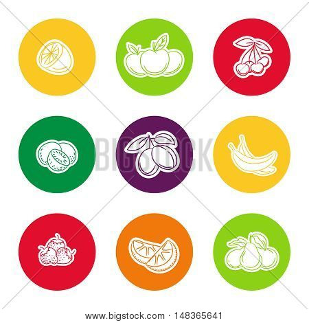 Line fruit icon set in colorful curcles vector illustration