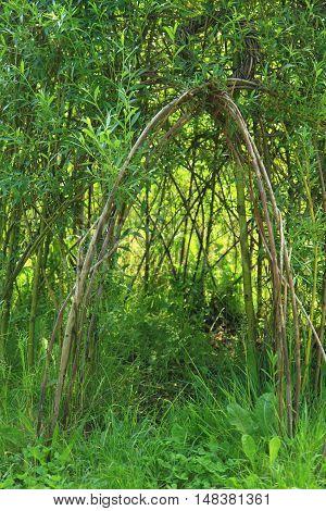 Wicker House From Green Plants