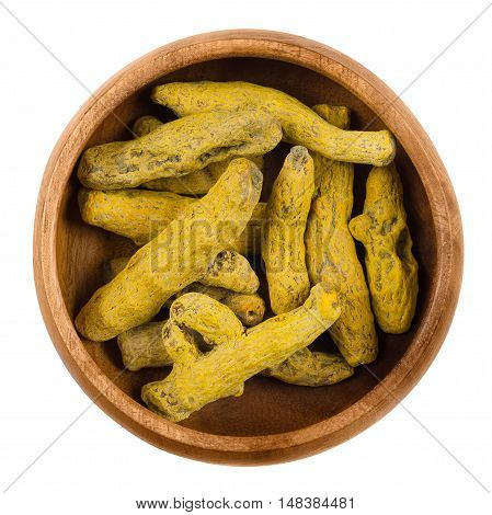 Processed turmeric rhizome in a wooden bowl over white. Curcuma longa, also called tumeric. Boiled roots, then dried and grounded into a yellow powder. Used as spice for curries and coloring mustard.