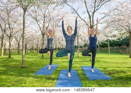 Three young women standing in  a tree pose, vrksasana. Vrksasana. helps to stretch inner thighs and posture and also develops balance.