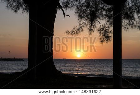 Tropical beach landscape with a trees silhouettes during sunset at Kg.Pohon Batu LABUAN F.T MALAYSIA, January 2016