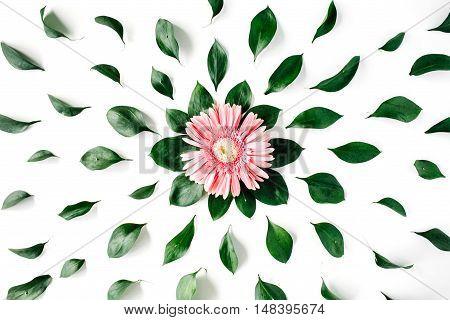 Pink gerbera daisy pattern on white background. Flat lay