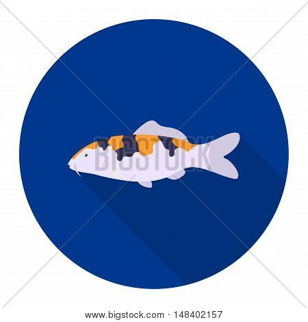 Carp-koi fish icon flat. Singe aquarium fish icon from the sea, ocean life flat.