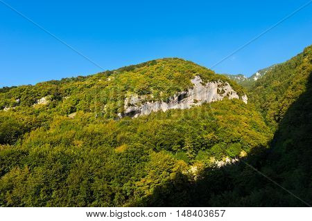The green forests of Mount Baldo in summer (Baldo Mountain) 2218 m. and the rock walls smoothed by the action of the glacier. Verona Veneto Italy
