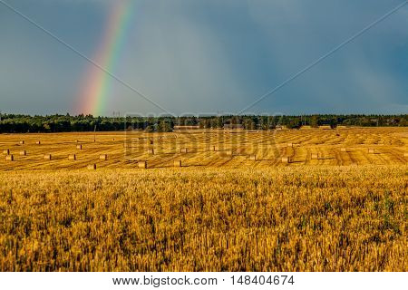 Straw bales landscape with rainbow on a sunny day.