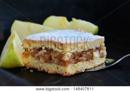 Apple pie square bar with cinnamon and powered sugar on pie server. Shallow dof.