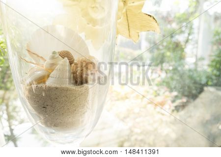 Shells and sand in the big glass.