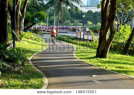 People Ride  On The Bicycle Lane