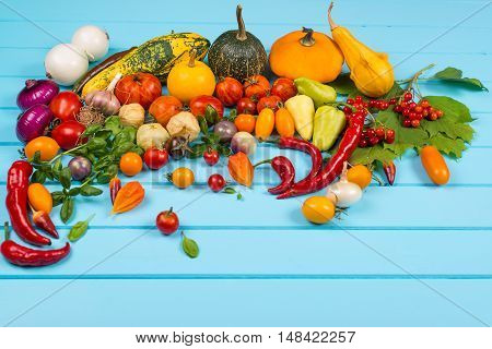 Vegetable background. Fresh peppers tomatoes basil zucchinipumpkinspices and seasoning on the blue wooden background. Organic food concept. Space for text.