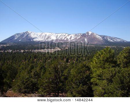 Mount Elden