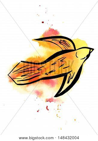 A freehand vector and watercolor drawing of a golden bird in flight, with splashes of paint, on white background