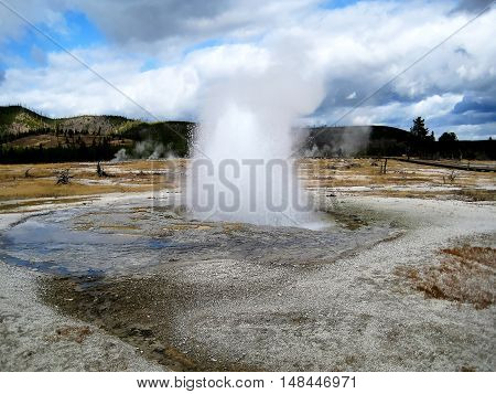 Geyser in eruption in Biscuit Basin (Yellowstone, Wyoming, USA)