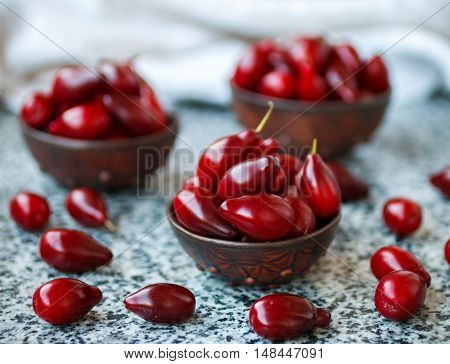 Ripe Juicy Berries Of Dogwood. Cornel. Selective Focus