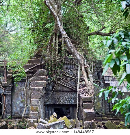 Beng Mealea Temple Over Jungle, Cambodia