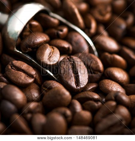 Square Marco shot of dark rich roasted coffee beans with a silver scoop window light copy space and room for text over blurred lower part ideal for pinterest or blogs