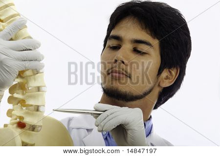 portrait of a chiropractic doctor