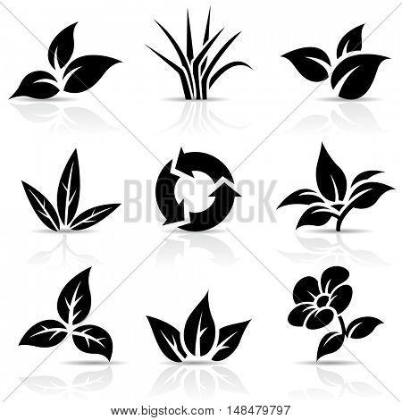 Illustration of Black Leaves isolated on white