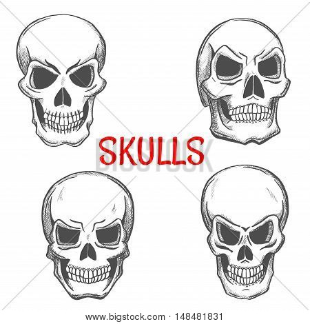 Skulls sketch icons. Skeleton craniums crossbones for halloween decoration, cartoon, label, tattoo, religious decoration elements