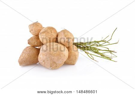 yam bean or jicama with stem on white background