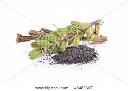 black sesame seed and sesame pods with stem on white background