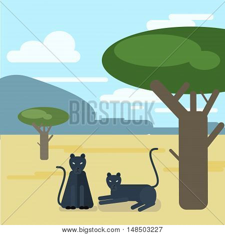 Wild cats. Two Panthers settled down a tree. Vector illustration of a flat