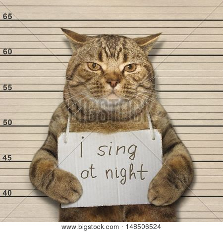 A cat often sings at night. It's songs keep people awake. It was arested for this.