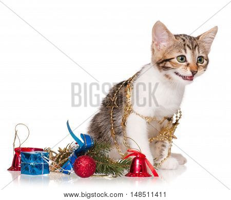Cute kitten with accessories of celebration of new year isolated on white background