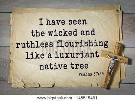 TOP-1000.  Bible verses from Psalms.I have seen the wicked and ruthless flourishing like a luxuriant native tree