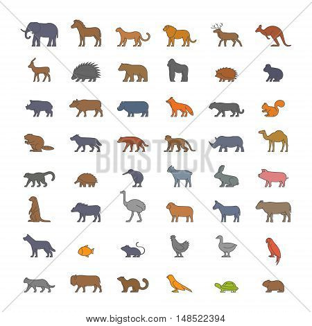 Vector flat set of silhouettes of farm and wild animals. Linear flat icon kangaroos hedgehog ferret dromedary beaver warthog and others. Open path.
