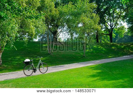 Summer park, bike, bicycle path and lawn