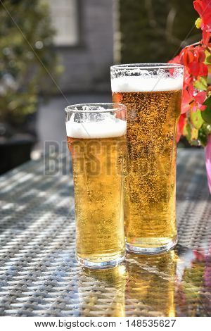Beer in glass on glass table against flower during sunny day