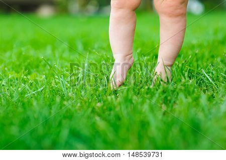 Baby feeling grass for the first time. Child's feet touch the grass